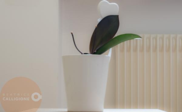4A - Quadrilocale con giardino Merano